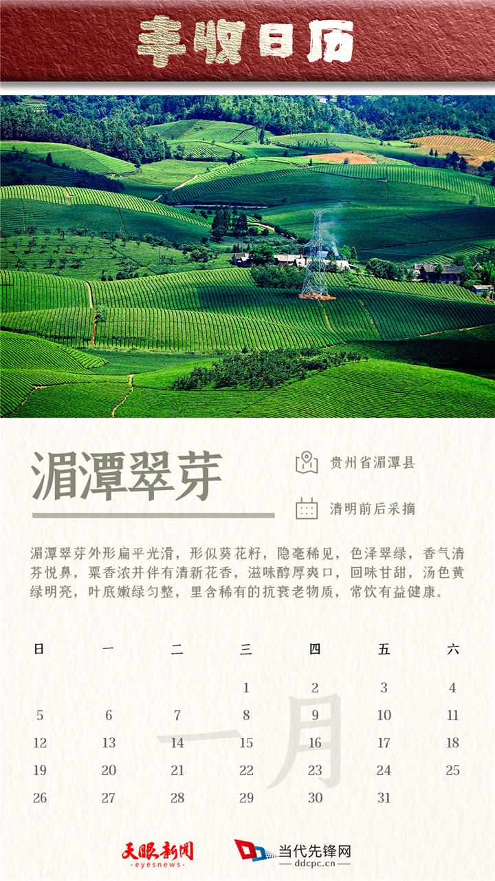 """【天眼V创】贵州特产""""特""""在哪儿?收藏这份丰收日历你就知道了……"""