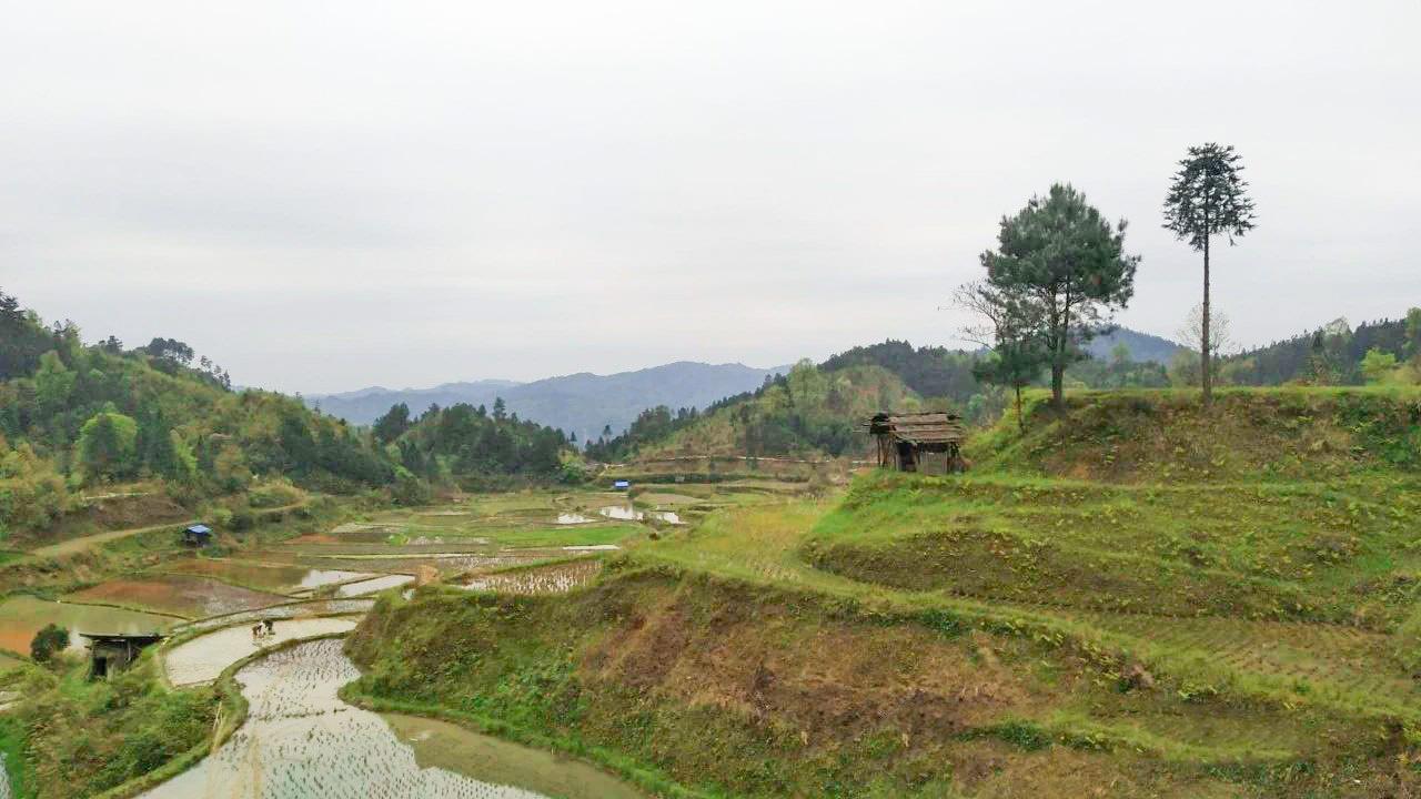 剑河翁王村:一个深度贫困村的华丽蜕变