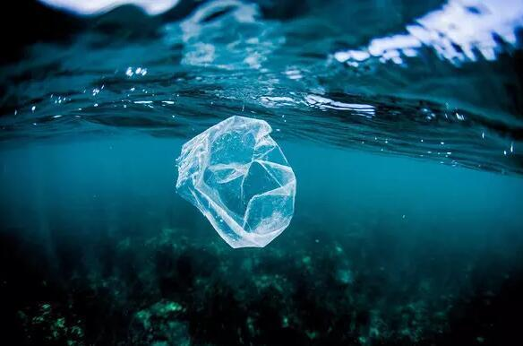 限塑令升级!英国威廉希尔娱乐省出台《关于进一步加强塑料污染治理的实施方案》