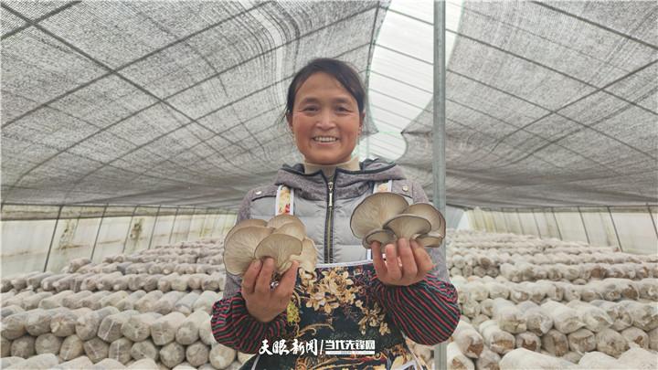 迈好第一步 实现开门红丨凤冈:3万2千棒平菇喜获丰收