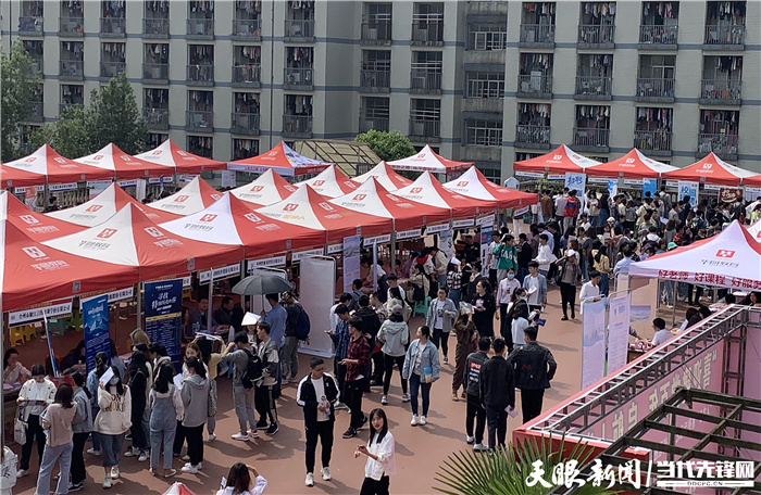 贵州大学:多措并举做好毕业生就业工作