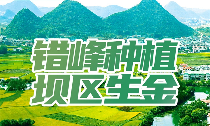 云周刊第64期 | 在贵州,做一个幸福的农民!