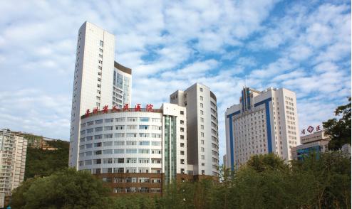 筑牢健康之基 --贵州省人民医院跨越发展综述