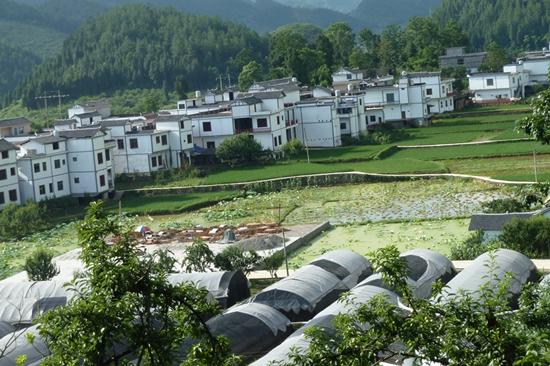 """沿河中界镇孙家村民居风貌。   现代高效休闲农业园区:来自多兰特玫瑰产业园的探索   沿河多兰特玫瑰产业园项目为沿河自治县2015年招商引资项目,由北京中控大通投资集团公司投资,位于团结街道、淇滩镇和中界镇交汇处,总占地面积2万亩,总投资2亿元,建设周期为4年,其核心区位于淇滩镇皂渡村和中界镇联山村。该项目以玫瑰种植及加工为基础,打造玫瑰花海,建设玫瑰庄园,形成以玫瑰为主题的现代高效休闲农业园区。   据该项目王经理介绍,项目主要建设分为""""玫瑰种植园区、玫瑰产品加工园区以及玫瑰养生农庄&rd"""