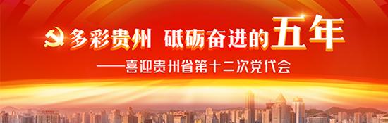 【治国理政新实践·贵州篇】点睛实体经济|贵州:..
