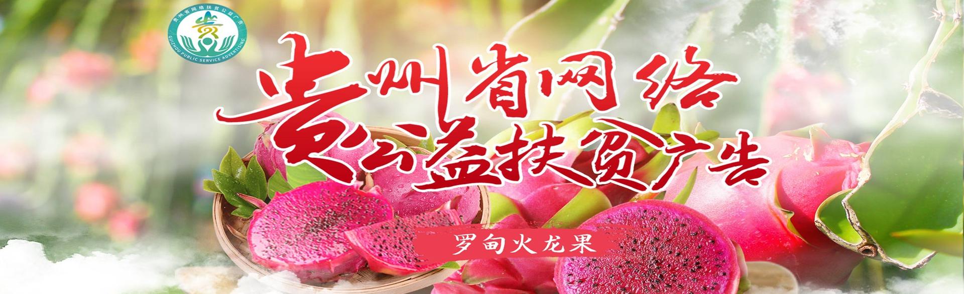 贵州网络扶贫公益广告