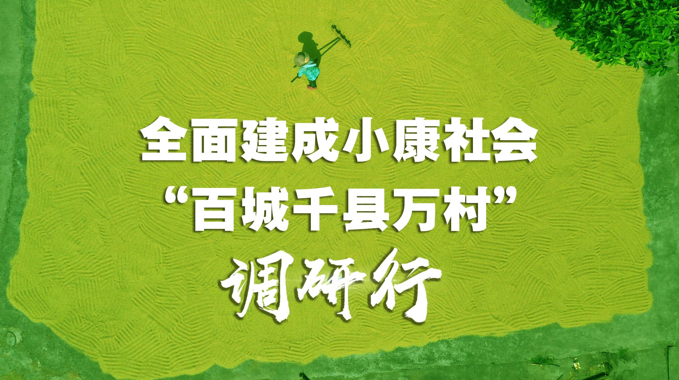 """全面建成小康社会""""百城千县万村""""调研行"""